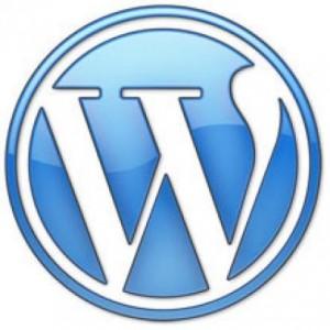 WordPress: Anzahl der Artikel und Kommentare ohne Plugin anzeigen
